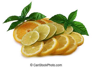 Citrus Fruits - Sliced oranges, lemons and limes