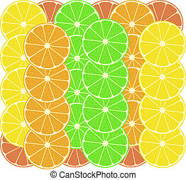 citrus fruits vector pattern background