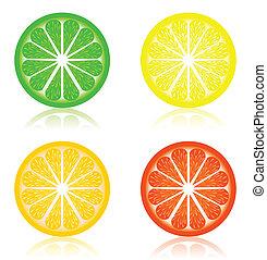 citrus, icône