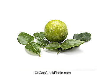 Citrus lime and leaves