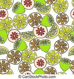 citrus, modèle, seamless, tranches
