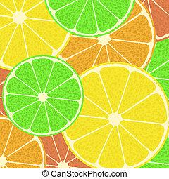 citrus, modèle, vecteur, seamless, fond
