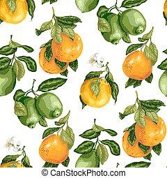 citrus, model, seamless, vector, vruchten, bloemen