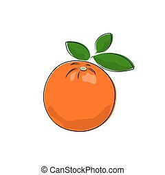 Citrus Orange Isolated on White