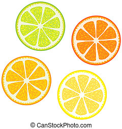 citrus, schijfen, vruchten