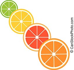 Citrus slices of lemon, orange, lime and grapefruit.