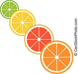 Citrus slices of lemon, orange, lime and grapefruit.