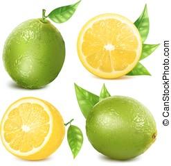 citrus, verse vruchten