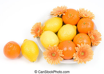 Citrus with flower