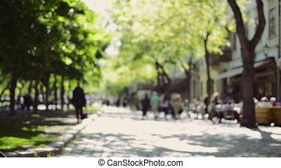 città, camminare, Bicicletta, maturo, uomo affari