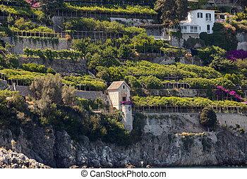 città, scenico, italy., amalfi, charmant, ricorso, amalfi., costa, vista