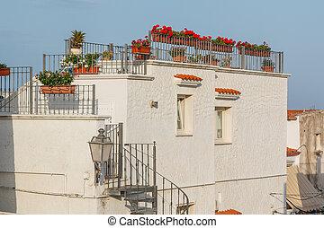 città, vecchio, casa, terrazzo, fiori, rosso