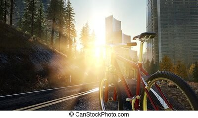 City bicycle on the road at sunset