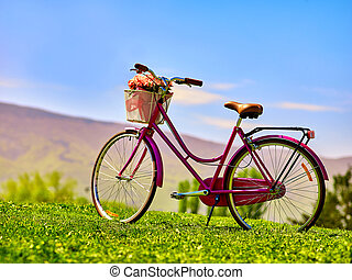 City bicycle with flower basket on green grass aganist blue sky.