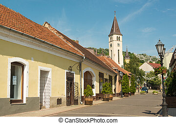 Tokaj town - City center of Tokaj town, famous wine growing ...