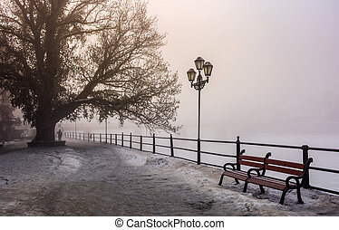 city embankment in foggy winter morning. beautiful european...