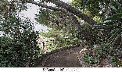 City garden at Monaco