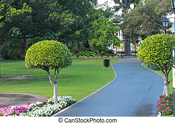 City garden park with pathway