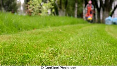 City gardener in uniform starts lawnmower. Man cutting grass. Urban scene.