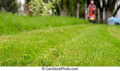 City gardener in uniform starts lawnmower. Man cutting grass. Urban scene.