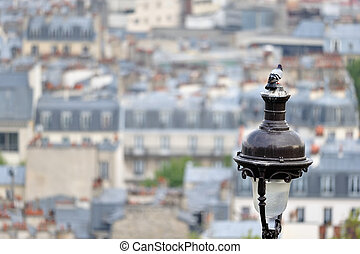 City Lamppost