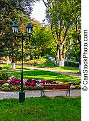City lights in the park - City lights and a bench on the...