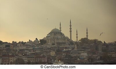 view of the Blue Mosque - city of Istanbul, view of the Blue...