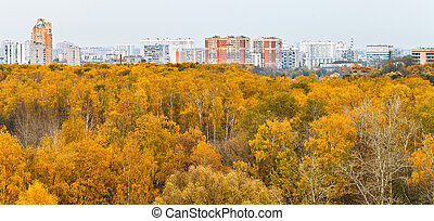 city panoramic view with autumn park
