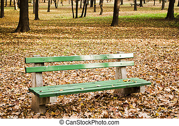 City park bench in autumn forest