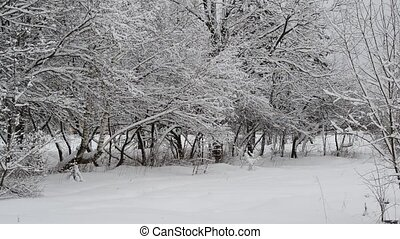 city park covered with snow near road