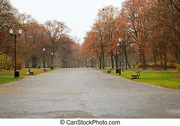 City park in a raining day