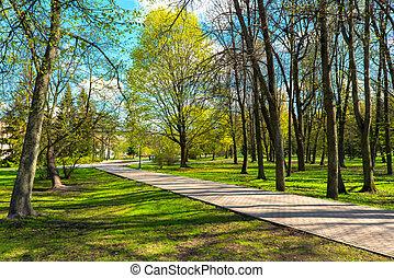 city ??park in spring sunny day