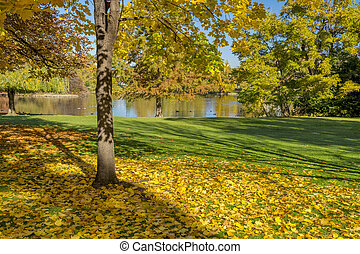 City Park in the Fall with leaves in Boise Idaho