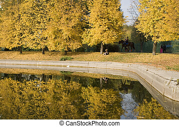 City park in the late of autumn