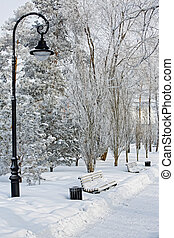 City park in the winter. Abundant snow and silence