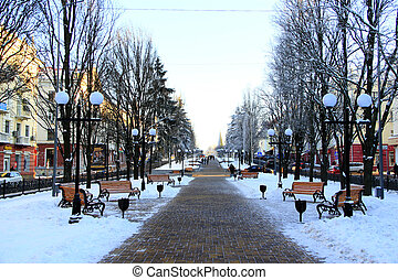 city park in the winter