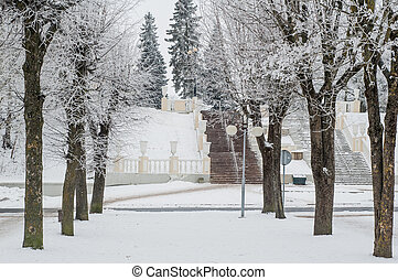City park in the winter, the trees covered with hoarfrost