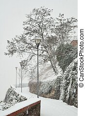 City path with street lamps and tree in snow