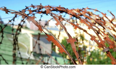 City razor wire fence - A city skyline in the morning...