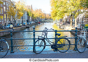 City scenic from Amsterdam in the Netherlands in autumn