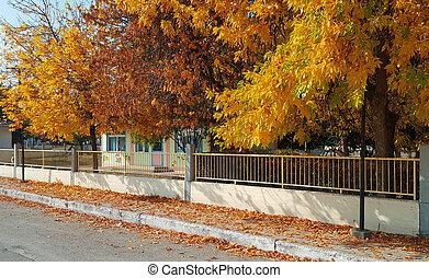 City street with beautiful yellow autumn trees