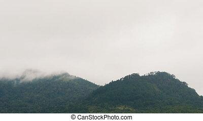 city., sur, dalat, formation, nuages, vietnam., pentes, mouvement