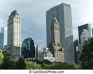 This is a shot of the tree tops and the skyline from Central Park in Manhattan.