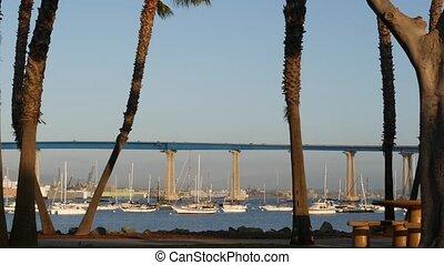 city., voitures, célèbre, baie, pacifique, californie, yachts, automobile, paumes, océan, comté, sur, port, infrastructure, transport, coronado, ancré, diego, américain, usa., san, luxe, pont, mer