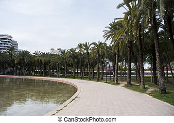 Citypark with palmtrees in the old channel of Turia river in Valencia, Spain. Parc Turia in Valencia