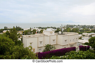 cityscape buildings mosque plants  trees Carthage Tunisia