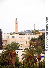 cityscape buildings mosque plants  trees Carthage Tunisia