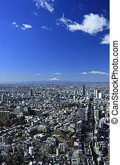 Cityscape of Shinjuku and Mt. Fuji