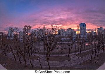 cityscape, urbain, fenêtre., vue