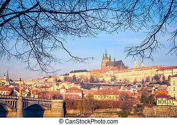 Cityscape view of Prague castle framed in tree branches